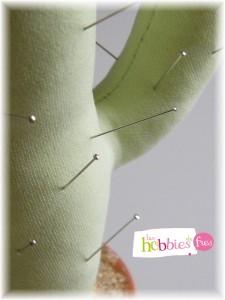 pique aiguille cactus 3